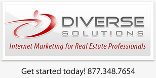 Diverse Solutions Logo
